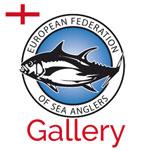EFSA England Photo Gallery
